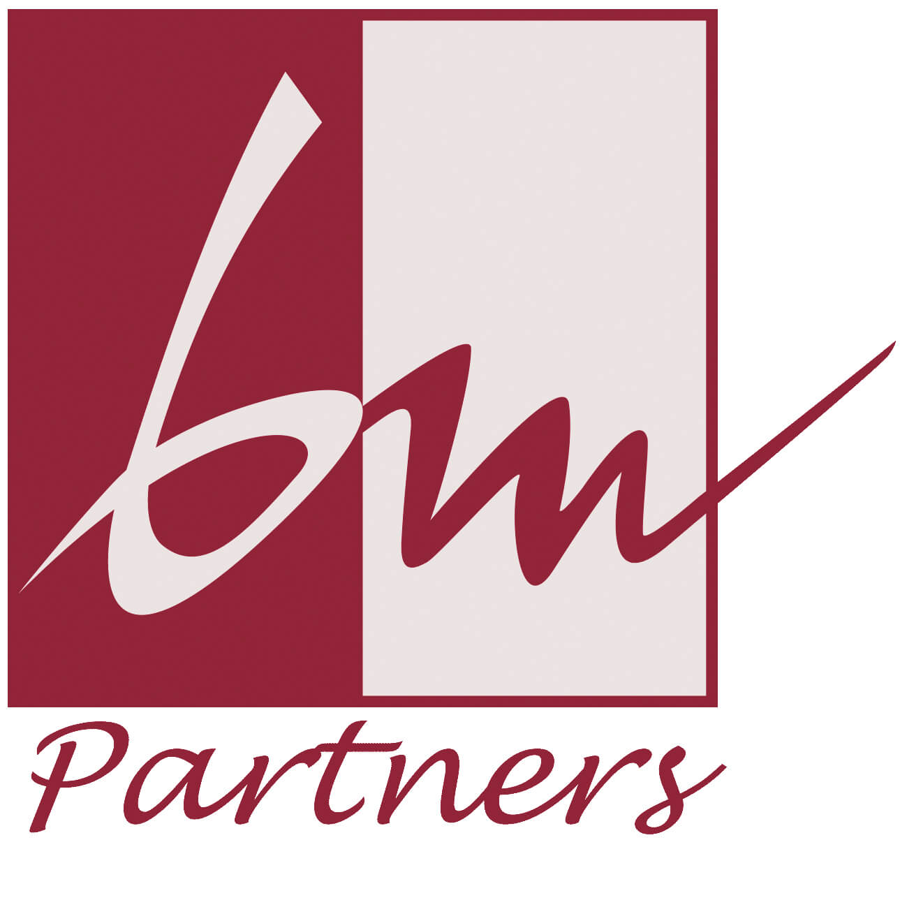 bmpartner-logo-PNG
