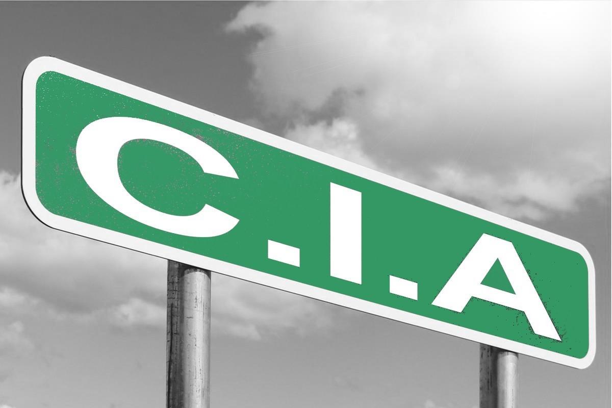 LE PITCH « CIA », ou la recette magique pour réussir sa présentation aux investisseurs !